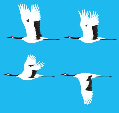 Oiseaux de grue Banque d'images - 49930544