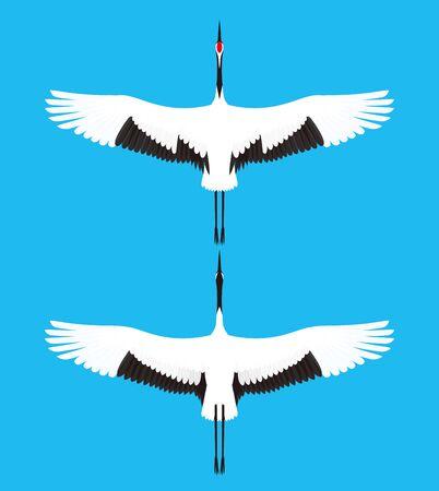 crane: crane Illustration