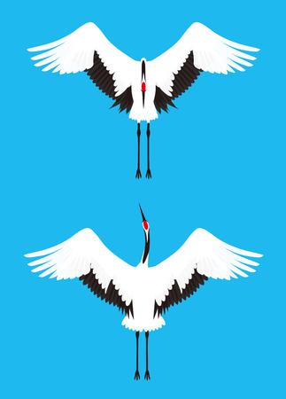 wild asia: crane Illustration