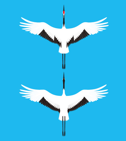 crowned: red crowned crane Illustration