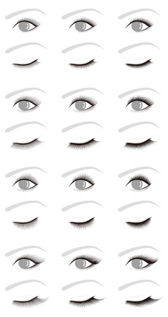 eyelids: Eyelash extensions.false eyelashes. volume. Illustration