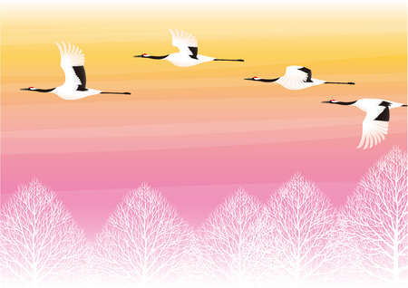 midwinter: Crane and sunset Illustration