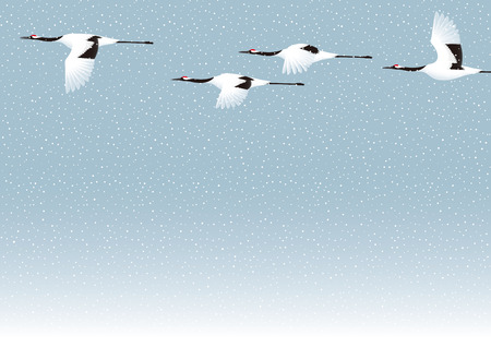 midwinter: Snow and crane