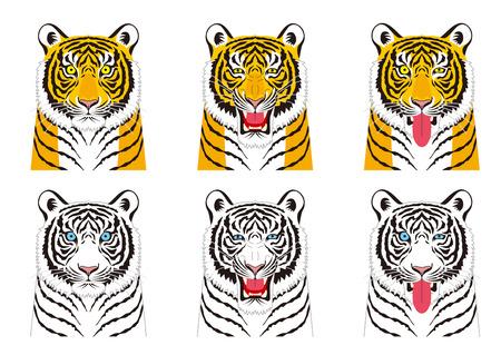 Tiger. Facial expressions. Vektorové ilustrace
