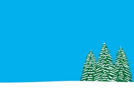 Pine trees of winter sunny