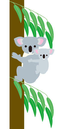 australia landscape: Koala parent and child Illustration