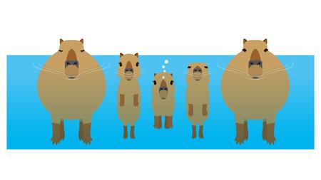 capybara Illustration