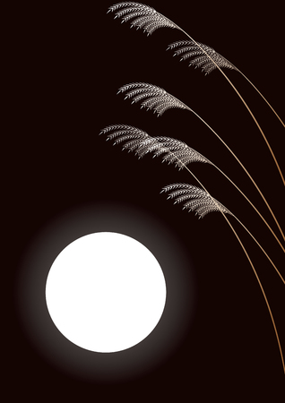 material flower: Japanese pampas grass and full moon