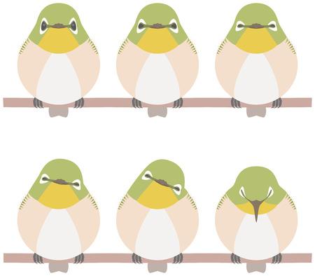 Japanese White-eye (bird) 版權商用圖片 - 76688594
