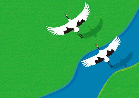 A summer couples of cranes Иллюстрация