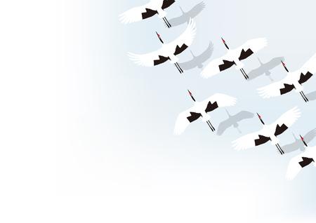 group of winter cranes
