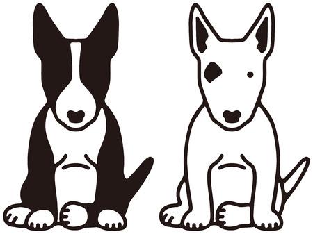 ブルテリア面白いペット犬
