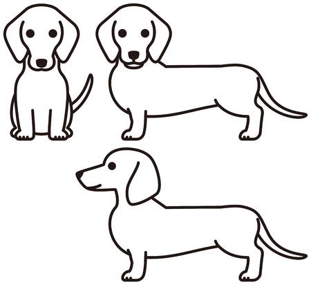ダックスフント面白いペット犬