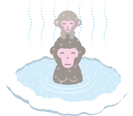 Parent-child monkey entering hot springs