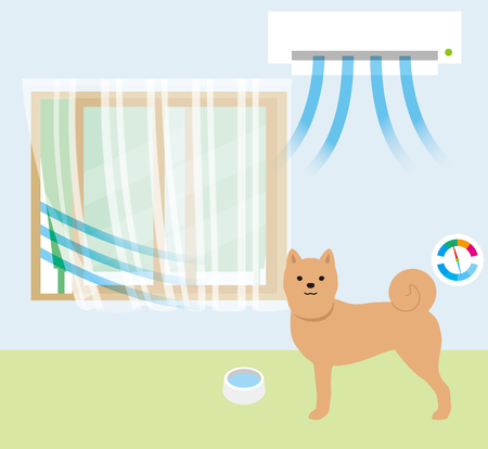 A dog in an aircond room.