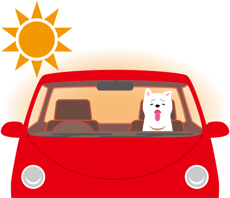 Risk of heat stroke. Dog confined inside the car.