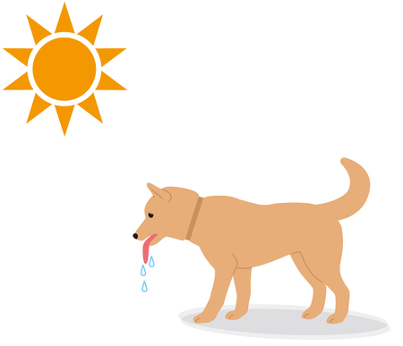Symptoms of heat stroke in dogs. Illustration