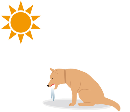 Symptoms of heat stroke in dogs. vomiting. Illustration