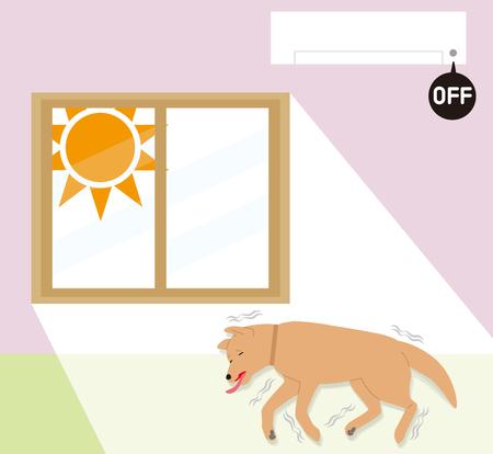Symptoms of indoor dogs  heat stroke. Convulsions.
