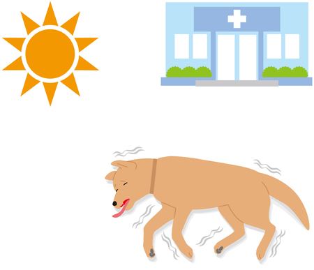 Symptoms of heat stroke in dogs. syncope. convulsions.