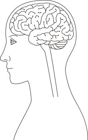 An image of landscape brain. Ilustração