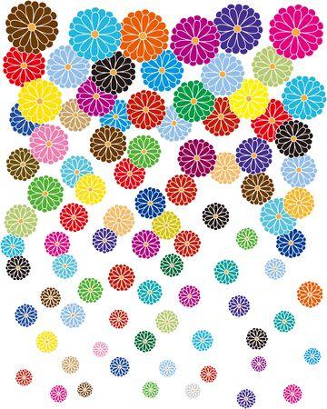 Japanese style chrysanthemum. Vector illustration. Ilustrace