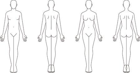Illustration of the Human Body. Mare female sketch Vettoriali