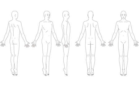 Illustration of the human body. Schematic of a man.
