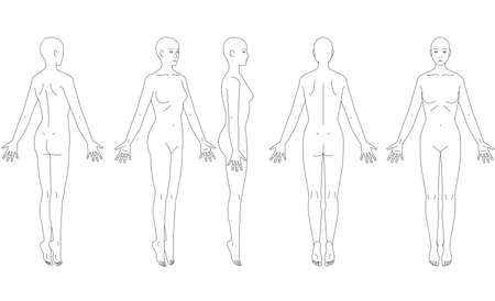 Illustration of the human body. Schematic of a woman.