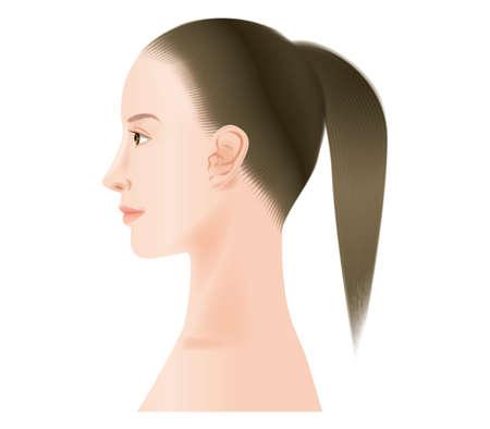 Profile of a woman. no makeup Illustration