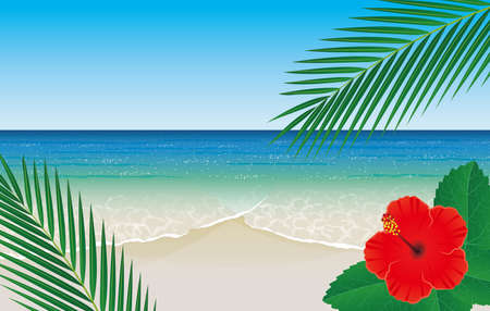 Tropical beaches, hibiscus and palm leaves 向量圖像