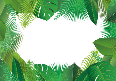 Frame of leaves of tropical plants 向量圖像
