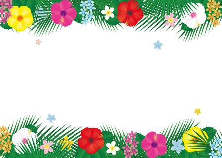 Tropical flower hibiscus and palm leaf frame. Vector illustration 向量圖像