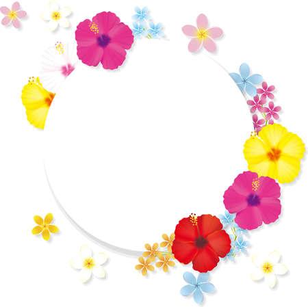 Tropical flower hibiscus frame. Vector illustration 向量圖像