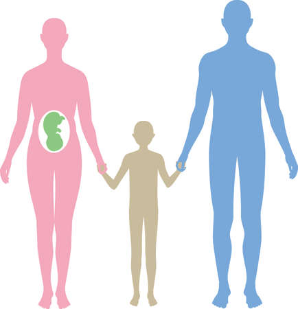 Human family silhouette. Vector material for pregnant women, couples and parents Vector Illustratie