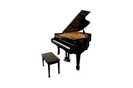 A  isolated extracted picture of a  black piano and bench
