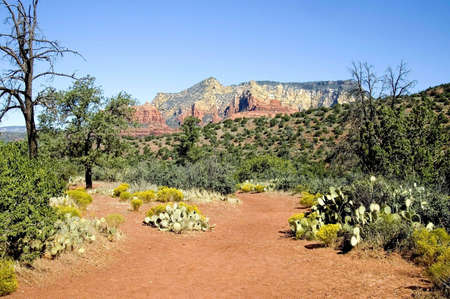 A picture showing the rock formations and color of Sedona Arizona