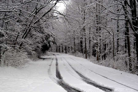A picture of a snow covered road taken after a storm in Indiana                          photo