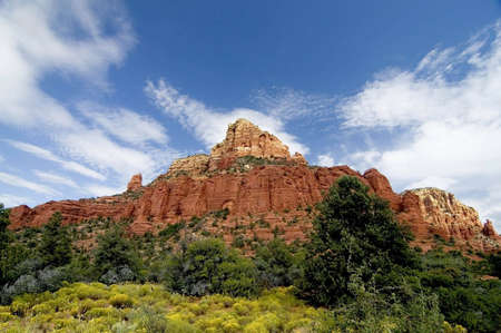 A picture of the desert vegitation and rock colors that is Sedona  Stock Photo