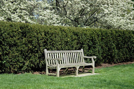 well maintained: A picture of a bench at a English garden Stock Photo