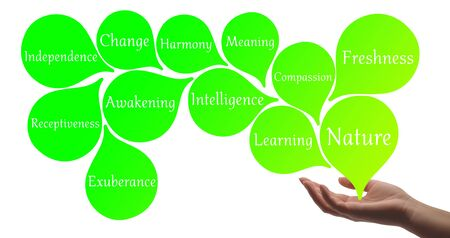 universal healer: Colour Therapy - Light Green healing energy Stock Photo