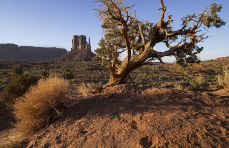 Monument Valley Butte photo