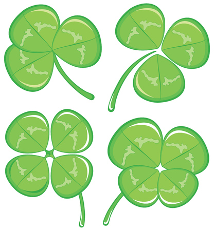 Nice green clover on a white background Vector