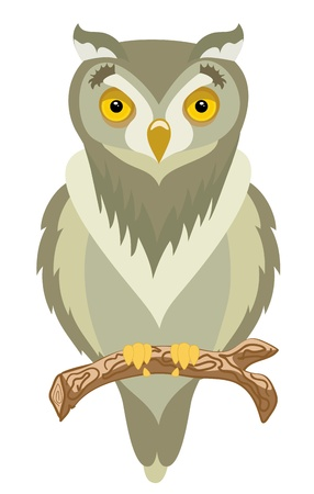 birds of prey: Clever and wild brown owl sits on branch Illustration