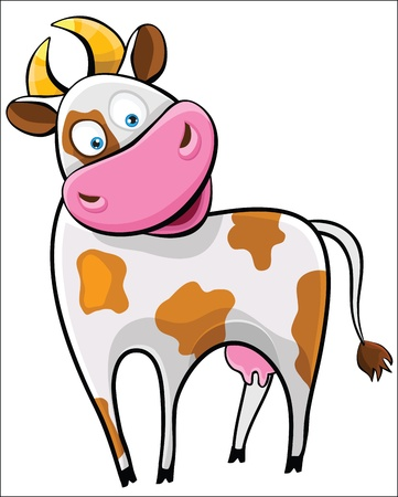 funny ox: Cow on a white background. Farm animal.