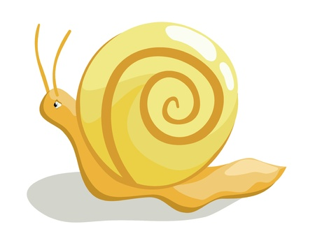 creeping: Beautiful creeping snail on white background Illustration