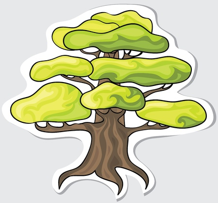 bonsai tree: Stylized tree for your design  Vector  Illustration