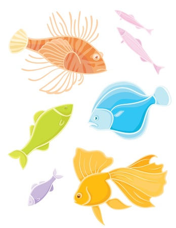 lionfish: Vector collections aquarium fishes  Set colors tropical fishes  Illustration