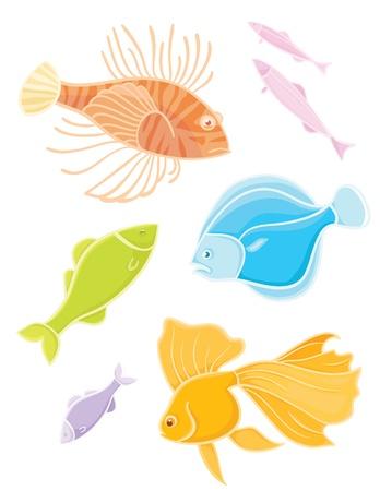 lionfish: Vector collections aquarium fishes  Set colors tropical fishes  Illustration