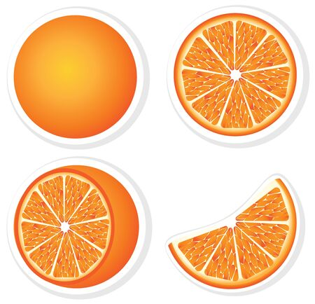 Set fresh orange fruits and slices   Illustration
